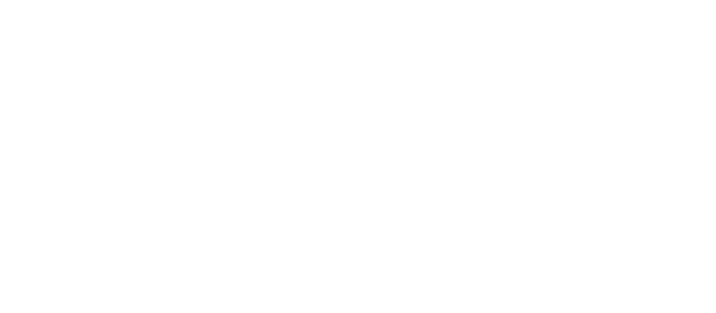 Gender Policy Report